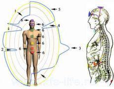 kfs-korektiruet-funkcii-organizma-cheloveka