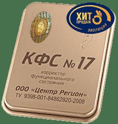 kfs-17
